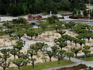 There are plenty of hidden treasures and little known secrets all over Golden Gate Park. We challenge you to visit and discover these fun and interesting facts about the park.
