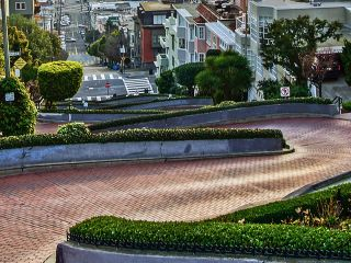 "Everything you needed to know about Lombard Street, ""The Crookedest Street in the World."""