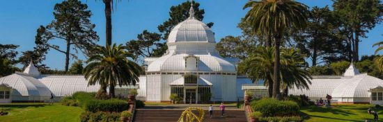 Whether you visit the park regularly or you've never been, this guide highlights the best things to do in one of San Francisco's most interesting locations.