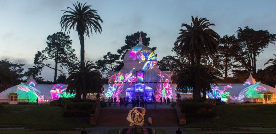 Illuminate at Conservatory of Flowers